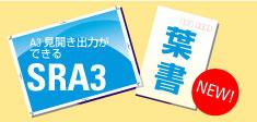 20100222-SRA3.jpg