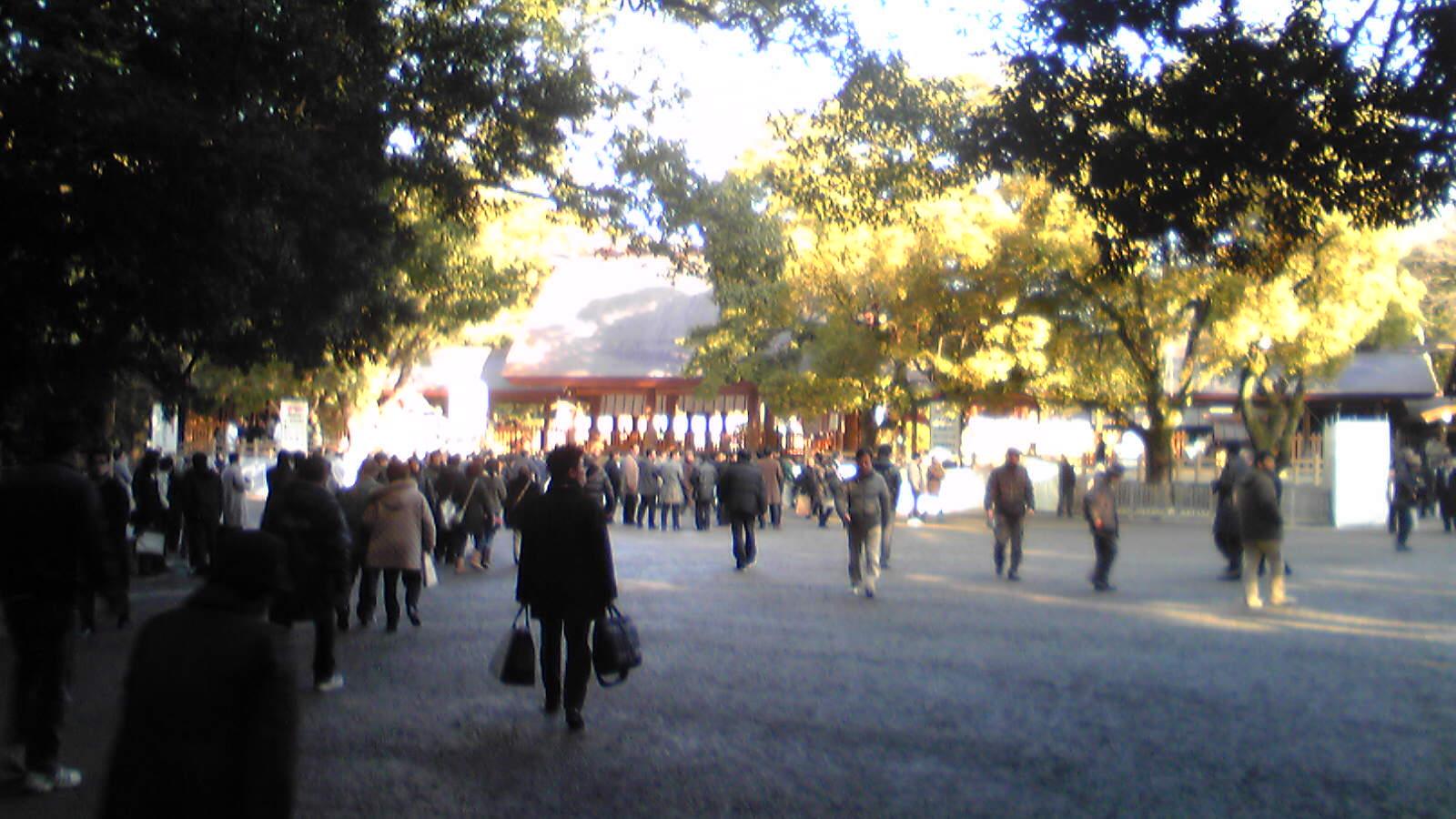 20110106-Image1720.jpg