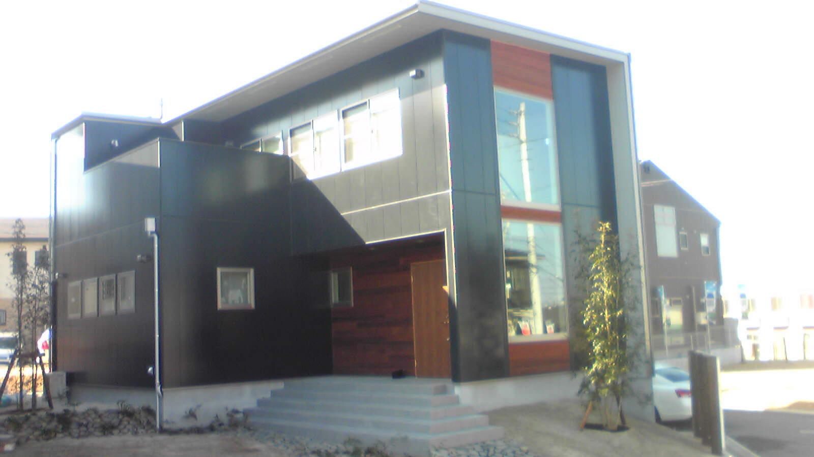 20110119-Image1741.jpg