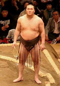 20110925-250px-Sumo_May09_Hakuho.jpg